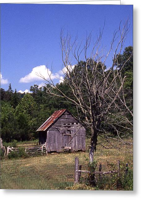 Old Shack Greeting Card by Curtis J Neeley Jr