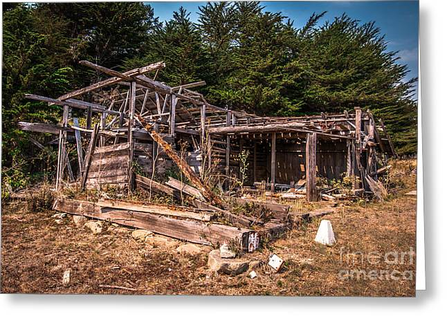 Old Shack In Cambria Pines Greeting Card