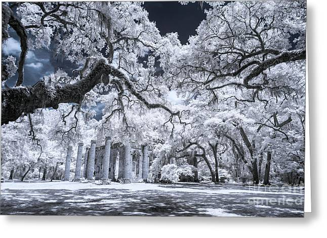 Old Sheldon Church In Infrared Greeting Card