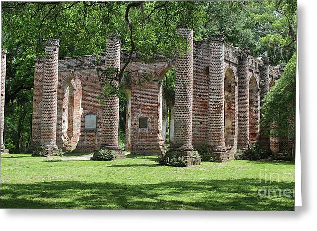 Old Sheldon Church Ruins In Sunlight Greeting Card