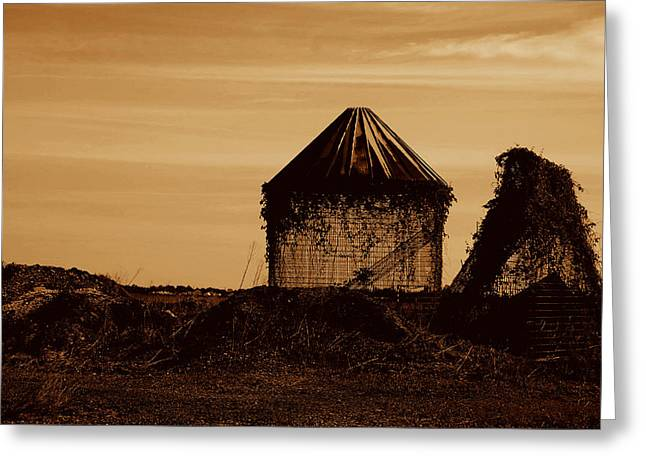 Greeting Card featuring the photograph Old Silo by Kathleen Stephens