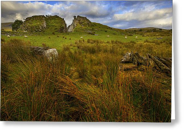 Greeting Card featuring the photograph Old Slate Quarry At Rhyd Ddu by Richard Wiggins