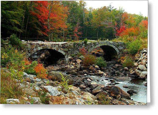 Old Stone Bridge In Fall Greeting Card by Lois Lepisto
