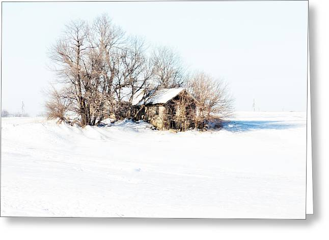 Old  Stone House Milford Greeting Card by Julie Hamilton