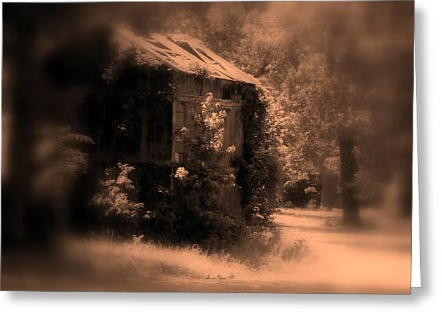 Old Tobacco Barn In Nc Greeting Card by Susanne Van Hulst