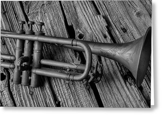 Old Trumpet Close Up Greeting Card by Garry Gay