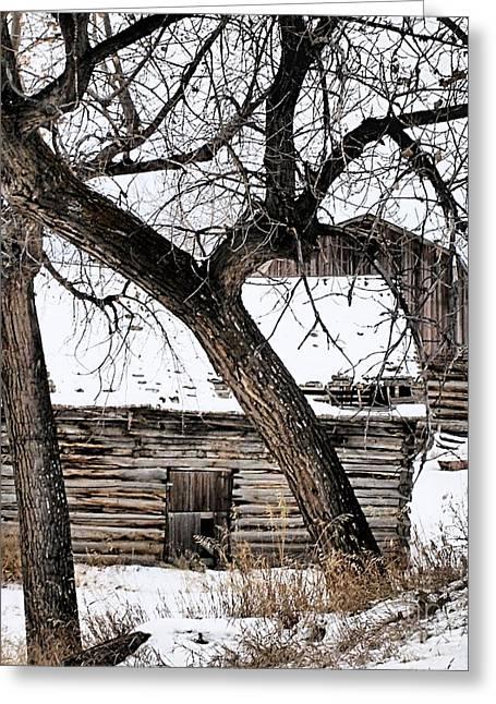 Old Ulm Barn Greeting Card