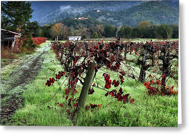 Old Vineyard Barns Greeting Card by Jon Neidert