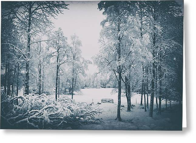 Old Vintage Winter Landscape Greeting Card by Christian Lagereek