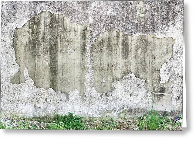 Old Wall Greeting Card by Tom Gowanlock