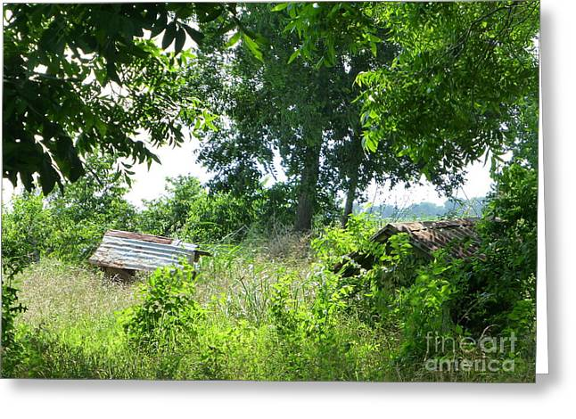 Old Well In Texas Greeting Card by As the Dinosaur Flies Photography