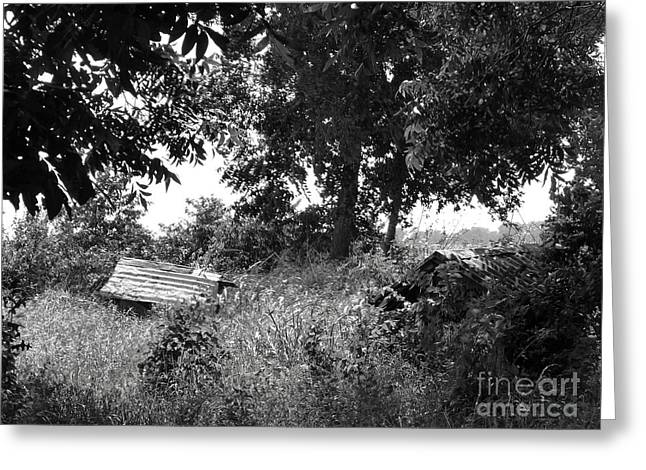 Old Well In Texas Bw Greeting Card by As the Dinosaur Flies Photography