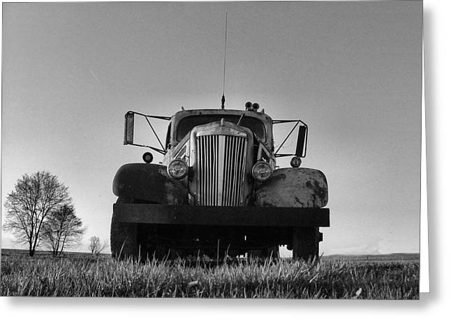 Old White Superpower I In Bw Greeting Card by Julie Dant