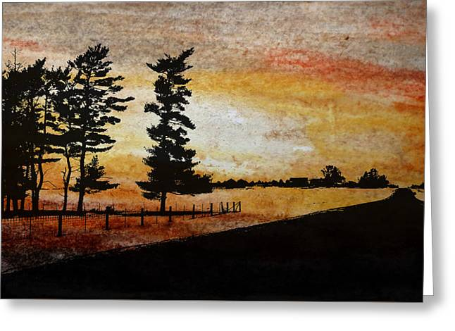 Old Windbreak Greeting Card by R Kyllo