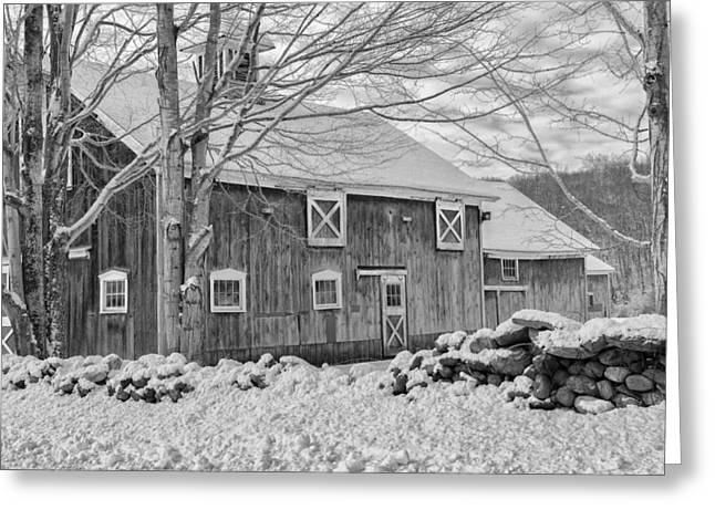 Old Winter Bw  Greeting Card