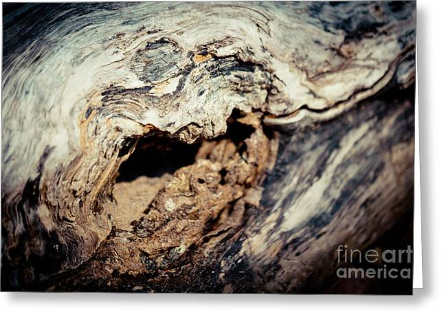 Old Wood Abstract Vintage Texture Artmif Greeting Card