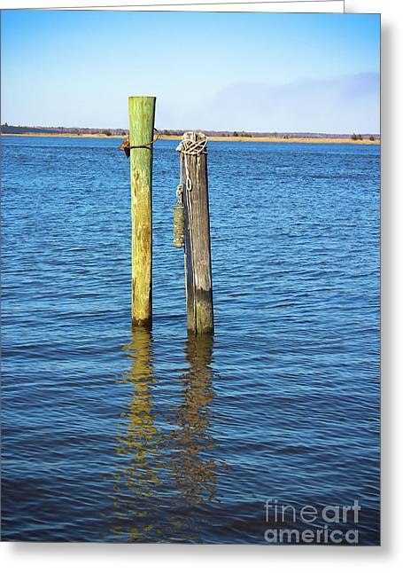 Greeting Card featuring the photograph Old Wood Pilings In Blue Water by Colleen Kammerer