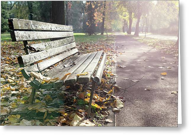 Rustic Wooden Bench During Late Autumn Season On Bright Day Greeting Card