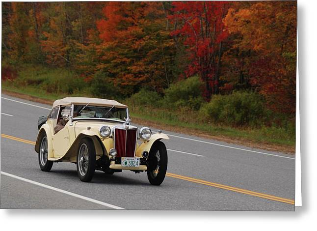 Greeting Card featuring the photograph Old Yeller 8168 by Guy Whiteley