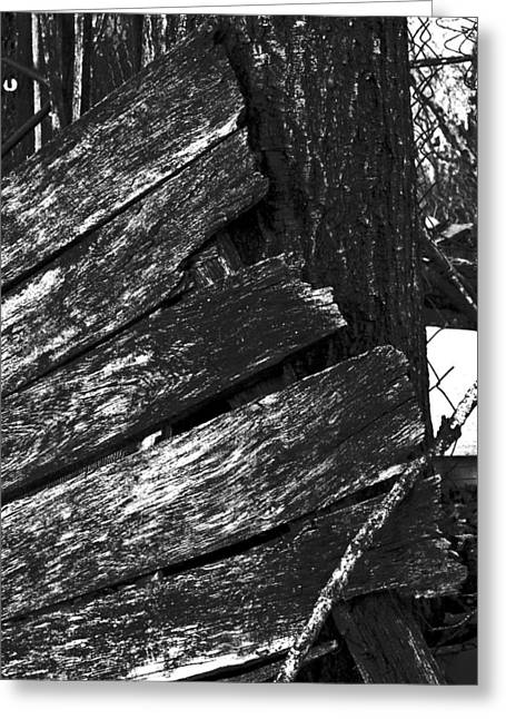 Olddoornextdoor16-18 Greeting Card by Curtis J Neeley Jr
