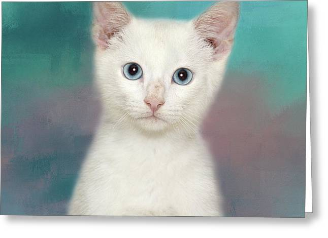 Ole Blue Eyes Greeting Card