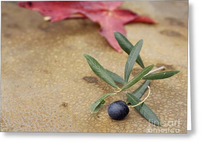 Greeting Card featuring the photograph Olive by Cindy Garber Iverson