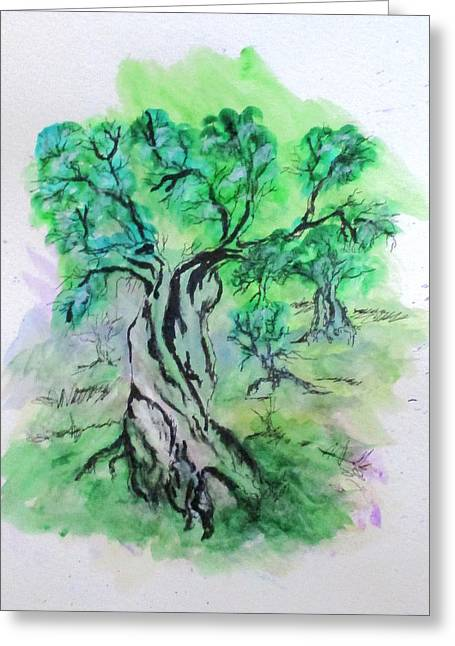 Olive Tree Grove Greeting Card
