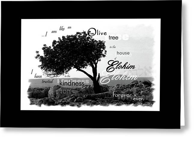 Olive Tree In House Of Elohim Greeting Card