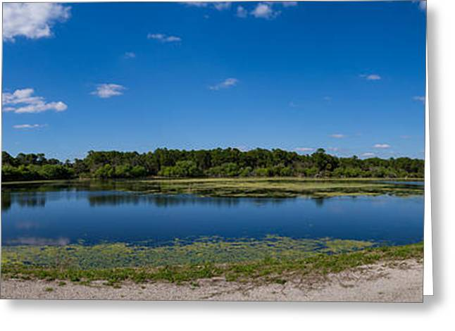 Ollies Pond In Port Charlotte, Florida Greeting Card