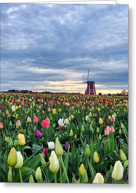 Ominous Spring Skies Greeting Card