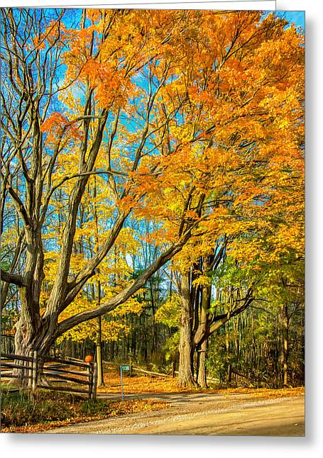 On A Country Road 5 - Paint Greeting Card by Steve Harrington