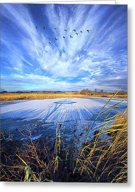 Greeting Card featuring the photograph On Frozen Pond by Phil Koch