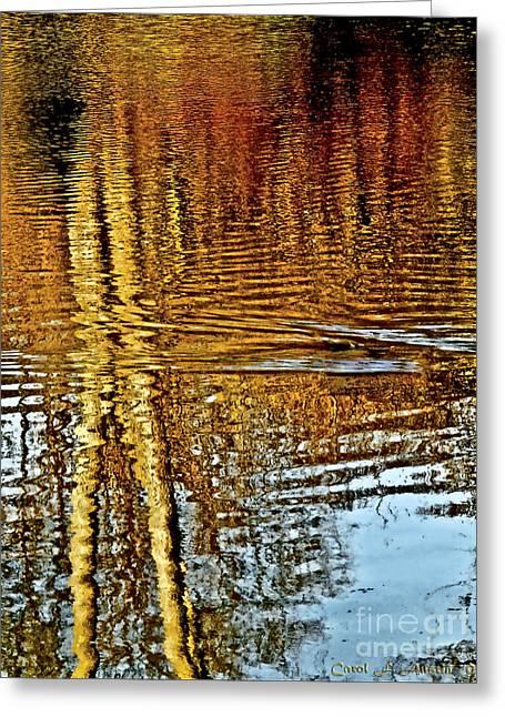On Golden Pond Greeting Card by Carol F Austin