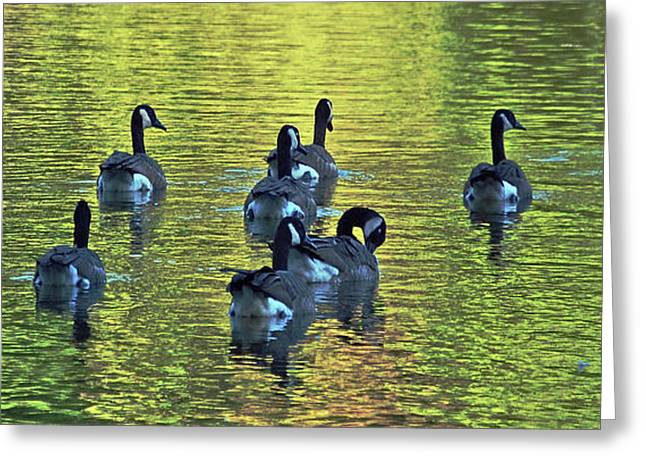 On Golden Pond Greeting Card by DigiArt Diaries by Vicky B Fuller