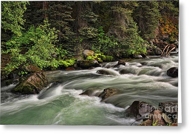 On Henson Creek Greeting Card