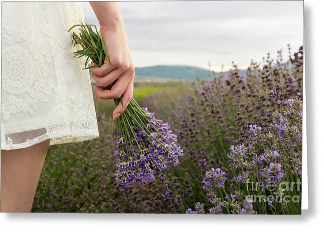 On Lavender Field Girl In White Dress Holding Bouquet Greeting Card by Maria Kutinska