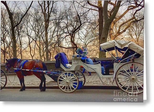 On My Bucket List Central Park Carriage Ride Greeting Card