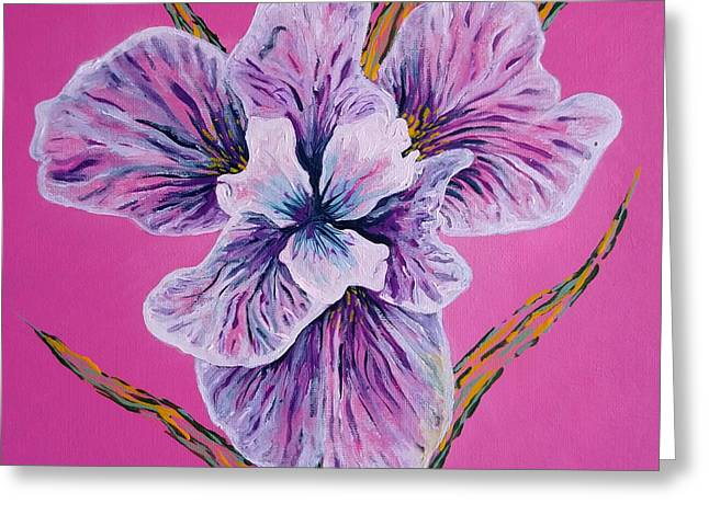 On Persian Pink Greeting Card by Aarron Laidig