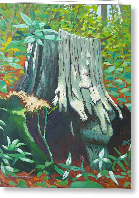 On The Appalachian Trail Greeting Card by D T LaVercombe
