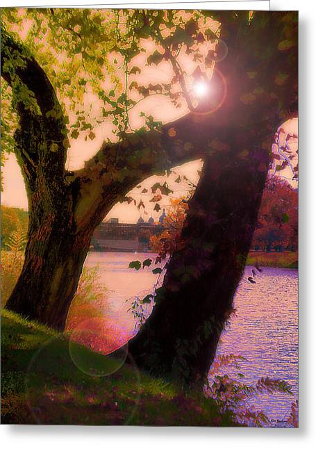 On The Bank Greeting Card