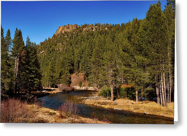 On The Banks Of The Truckee River Greeting Card by Mountain Dreams