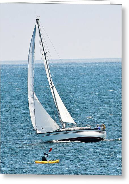 Santa Cruz Sailboat Greeting Cards - On The Bay Greeting Card by Liz Santie