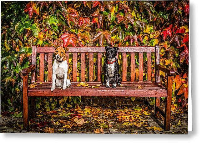 On The Bench Greeting Card