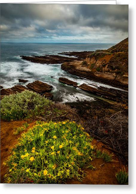 On The Coast Greeting Card by Dan Holmes