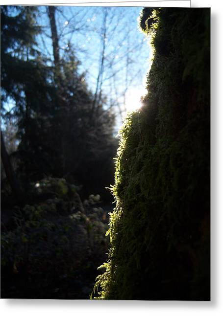 On The Egde Of Light Greeting Card by Ken Day