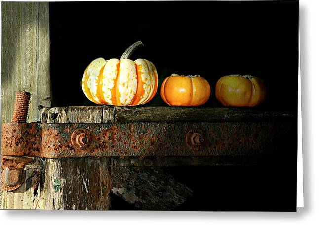 On The Fence Greeting Card by Diana Angstadt