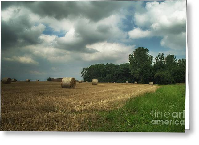 On The Field Before Rain Greeting Card by Michelle Meenawong