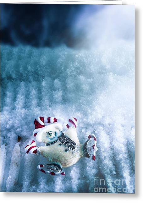 On The Ice Greeting Card by Jorgo Photography - Wall Art Gallery