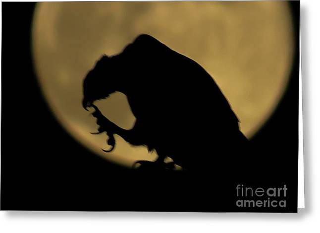 On The Moon Greeting Card by Zina Stromberg