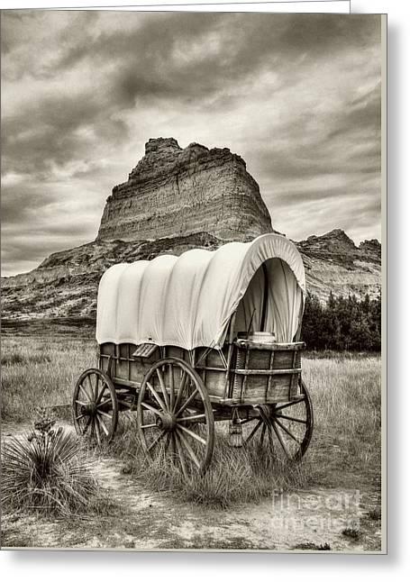 On The Oregon Trail # 3 Sepia Tone Greeting Card by Mel Steinhauer